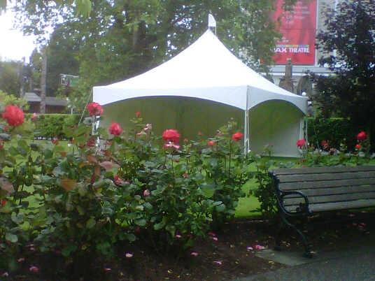 wedding tent 20x20